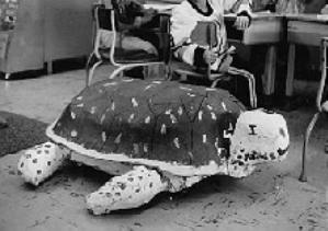 paper mache turtle